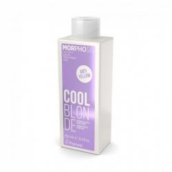Framesi Morphosis Cool Blonde Shampoo 250 ml capelli biondi Framesi - 1
