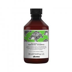 Davines Naturaltech Renewing Shampoo 250ml Davines - 1